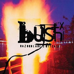 09 - Bush